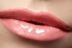 Labios de la moda del primer con maquillaje blando del lustre Imagenes de archivo