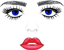 Labios de los ojos de las cejas