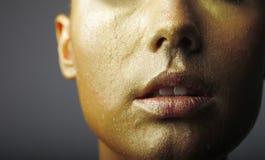 Labios de oro carnosos Imagen de archivo