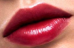 Labios del rojo del brillo Imagenes de archivo