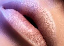 Labios regordetes del primer Cuidado del labio, aumento, llenadores Foto macra con el detalle de la cara Forma natural con contor imagen de archivo