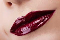 Labios rojo oscuro clásicos de la moda Imagen de archivo libre de regalías