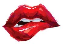 Labios rojos atractivos stock de ilustración
