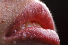 Labios rojos mojados atractivos Imagenes de archivo