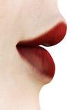 Labios rojos - vista lateral ilustración del vector