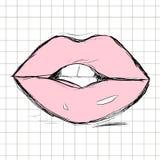 Labios rosados femeninos dibujados cerca libre illustration