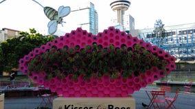 Labios rosados gigantes del panal Foto de archivo libre de regalías