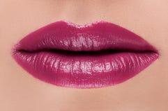 Labios rosados rojos clásicos de la moda Fotos de archivo