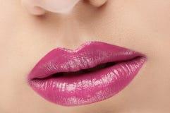 Labios rosados rojos clásicos de la moda Imágenes de archivo libres de regalías