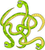 Labirint of cartoon snakes. Royalty Free Stock Image
