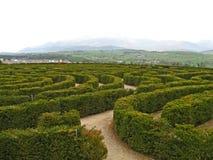 Labirinto 01 da paz Imagem de Stock