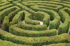 Labirinto Imagem de Stock