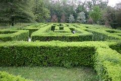 Labirinto Fotos de Stock