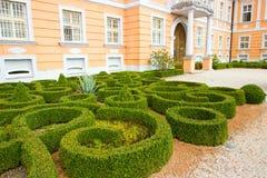 Labirinto da flor Foto de Stock Royalty Free