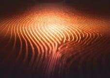 Labirinto di codice binario dell'impronta digitale Fotografia Stock Libera da Diritti