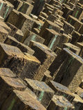 Labirinto di legno 1 Fotografia Stock Libera da Diritti