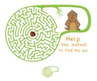 Labirinto di vettore, labirinto con la marmotta e dado Immagini Stock