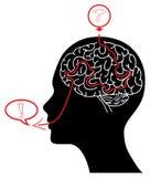 Labirinto do cérebro Fotos de Stock Royalty Free