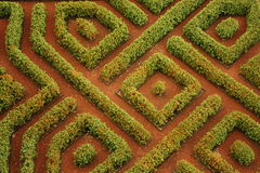 Labirinto do jardim Fotos de Stock