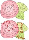 Labirinto facile del fiore Fotografia Stock Libera da Diritti