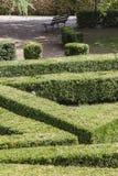 Labirinto nel giardino Immagini Stock