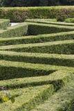 Labirinto no jardim Fotografia de Stock Royalty Free