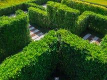 Labirinto verde do jardim Fotografia de Stock Royalty Free