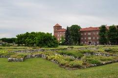 Labirints verts Image libre de droits