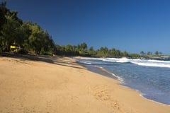 Labitynt blisko smoków zębów na zachodnim wybrzeżu Maui, Hawaje Fotografia Royalty Free