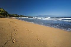Labitynt blisko smoków zębów na zachodnim wybrzeżu Maui, Hawaje Obrazy Royalty Free