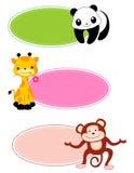 lable动物的框架 库存图片
