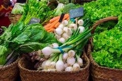 LaBoqueria marknad med grönsaker och frukter i Barcelona Royaltyfri Fotografi