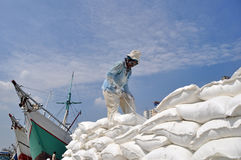 Labor activity at the port of Sunda Kelapa, Jakarta Royalty Free Stock Images