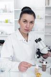 Laborancki asystent w laboratorium karmowa ilość Komórki kultury assay badać genetycznie zmodyfikowanego ziarna zdjęcia stock