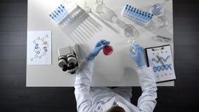 Laborancki pracownik egzamininuje purpurowego ciecz w kolbie, sumujący odczynnik, odgórny widok obrazy royalty free