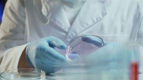 Laboranckiego pracownika dyrygentury badania probiercza konsystencja biologiczny materiał zbiory wideo