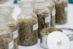 Laboratoire de café Image stock