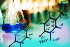 Laboratoire de la Science avec le thème chimique Image libre de droits