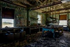 Laboratorio abbandonato di Uniersal Atlas Cement Company - Gary, Indiana Immagine Stock Libera da Diritti