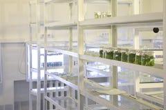 Laboratorio biológico Foto de archivo