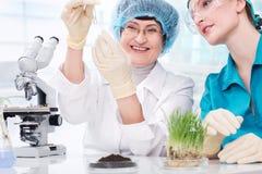 Laboratorio di biotecnologia Immagine Stock