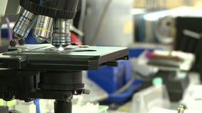 Laboratorio médico - tiro del detalle almacen de video