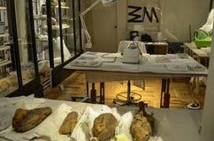 Laboratorium dla traktowania antyczni znaleziska zdjęcia royalty free