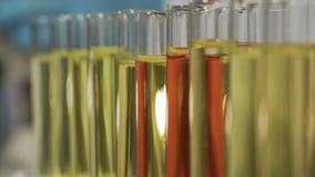 Laboratorium, naukowiec pracuje na projekcie, egzamininuje próbkę pod mikroskopem zbiory