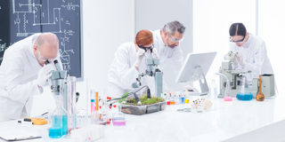 Laboratorium onder microscoopanalyse Stock Foto's