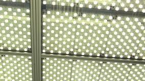 Laboratorium zaświeca w nauki izbowym laboranckim oświetleniu z żarówkami lub flashbulb fluorescencyjnymi lampami, konstanta nauk zdjęcie wideo