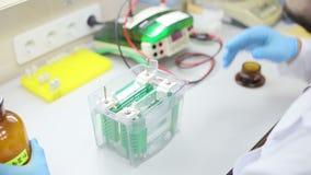 Laboratoriumarbetsplats för DNAprov arkivfilmer