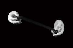 Laboratoriumet händer i vita handskar rymmer en svartvit film Royaltyfri Bild