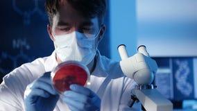 Laboratoriumexperiment stock video