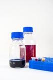Laboratoriumflaskor och eppendorfrör Arkivfoton